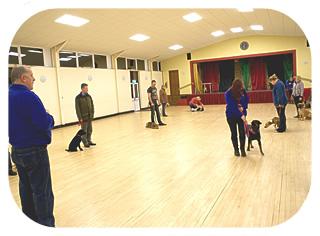 Barking Mad Dog Training Bury St Edmunds